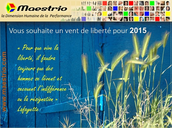 Voeux2015